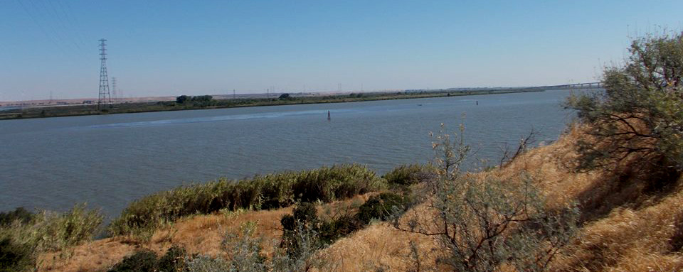Views of the San Joaquin River from the Antioch Dunes National Wildlife Refuge