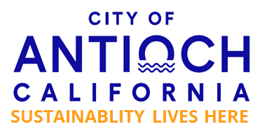 sustainablity lives here