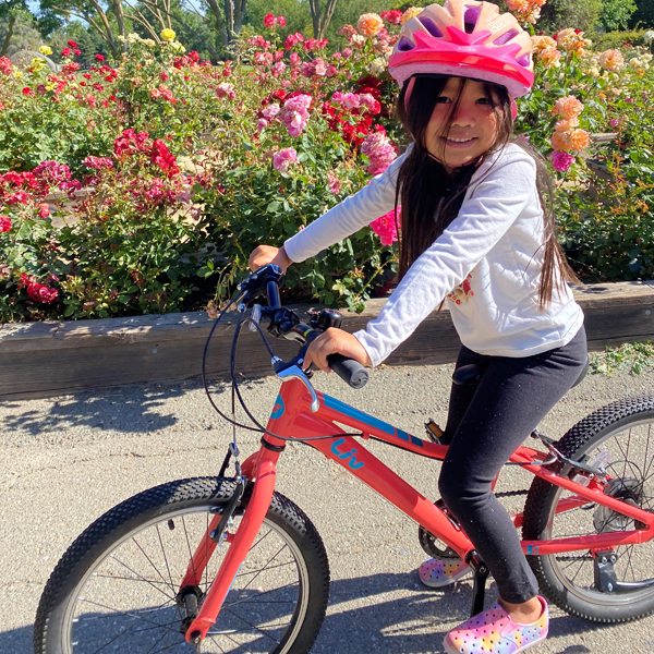 bicycle garden 4
